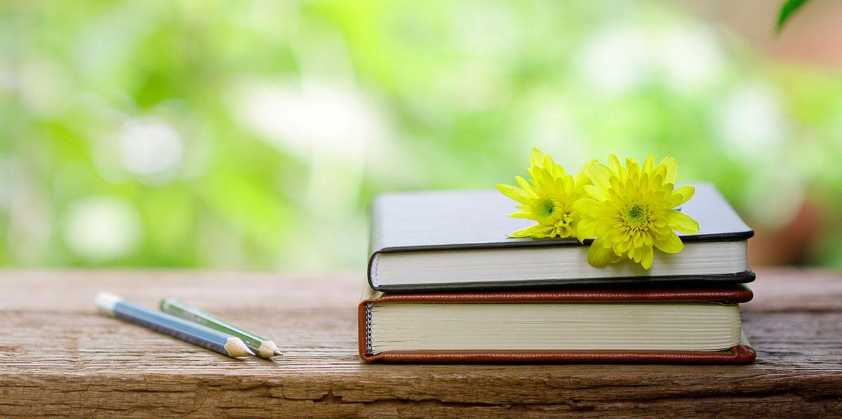 Literaturempfehlungen Rose-Maria Falter